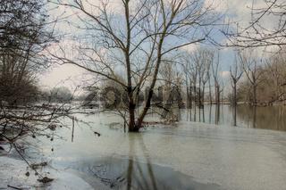 Naturschutzgebiet Biedensand nach einem Hochwasser