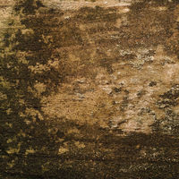 Old weathered wood as background, wood texture