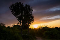 Sunrise, Uganda
