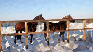 The horses in the corral walk in the snow