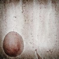 egg old grunge paper texture