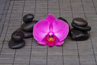 massage stones and orchid