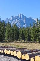 Cima Tre Scarperi, Dolomites, Italy
