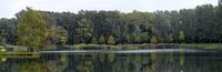 bathing pond with wooded brink