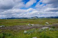view of the wild tundra landscape ofthe Stekenkokk Plateau in Swedish Lappland