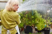 Ältere Gärtnerin beim Blumen gießen im Gartencenter