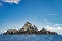 Little Skellig island, habitat for thousands of seabirds Gannet