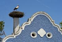 Storchennest mit Weissstorch (Ciconia ciconia) auf einem Burgenländer Bauernhaus mit Barockgiebel