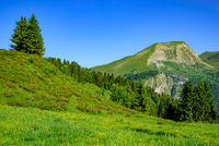 Landscape of mountains of Alps in summer with green meadow and flowers in Portes du Soleil,  France, Europe