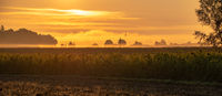 Beautiful sunset over the agricultural fields