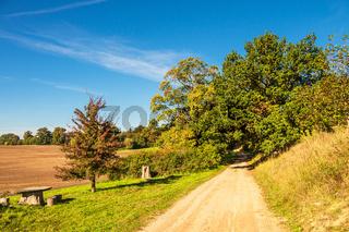 Landschaft mit Weg und Bäumen bei Hohen Demzin