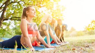 Gruppe im Yoga Kurs macht Kobra Übung in der Natur
