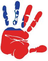 taiwan flag handprint