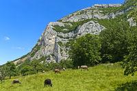 Salève Bergmassiv, Collonges-sous-Salève, Haute-Savoie, Frankreich