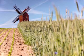Traebene Mill Windmill with green fields