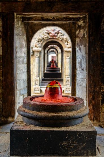 Lord Shiva temples at Pashupatinath in Kathmandu