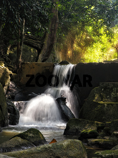 Tropical garden waterfall_2.jpg