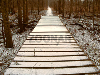 Snowfall over Hiking Boardwalk
