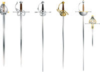 Set of the vector rapier and epee for fencing or duel