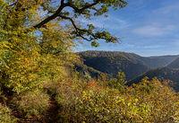 Bodetal Aussichtspunkt Herbst im Harz