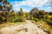 Darebin Parklands in Melbourne Australia