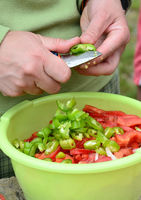 Salad with chili and tomatoes