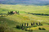 PIENZA, TUSCANY/ITALY - MAY 20 : Farmland near Pienza in Tuscany on May 20, 2013
