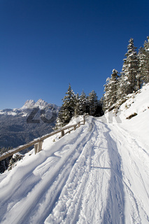 Trail on the slopes of San Vito di Cadore