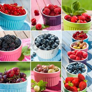 Früchte Collage