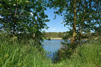idyllic nature at a former quarry pond (AWG-See) near the village of Ploetzky in Germany