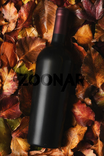 Red Wine Bottle laying in a filed of Autumn leaves. High angle shot with strong side light and vivid colors. Thanksgiving wine suggestions.