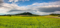 Summer landscape in Central Bohemian Uplands