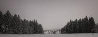 Winter magic Herzogsreut