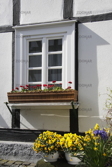 Window in a Frameworkhouse