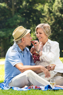 Playful pensioners having picnic outdoors