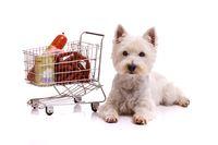 Dog with shopping cart lying