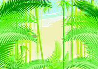 Tropical jungle with palm trees on the seashore