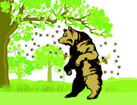 a bear with bees who wants honey, illustration