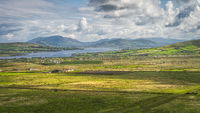 View from Kerry Cliffs on grazing cattle on fields and pastures of Iveragh peninsula