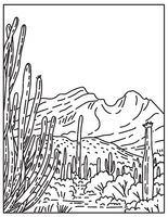 Organ Pipe Cactus National Monument in the Sonoran Desert located in extreme southern Arizona United States Mono Line or Monoline Black and White Line Art