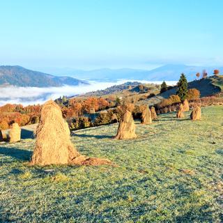Autumn misty morning mountain hill