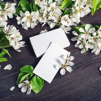 Business cards, flowers