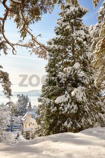 Deutschland, Baden-Württemberg, Bodensee, Überlingen am Bodensee, Winterlandschaft, Stadtpark, Blick