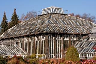 Botanischer Garten 002. Berlin