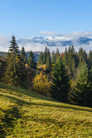 Late autumn mountain morning scene with snow covered tops in far and foggy clouds in valleys. Picturesque traveling, seasonal, nature and countryside beauty concept scene. Carpathians, Ukraine.