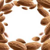Almond nuts levitate on a white background