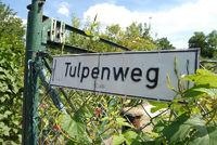 Tulpenweg in Kleingartenkolonie