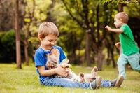 harmonious children's life with a four-legged friend