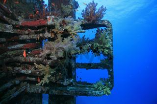 Schiffswrack der Ghiannis D., Shipwreck of Ghiannis D.