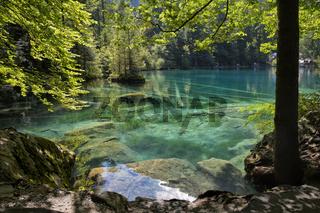 Blausee Kandertal Schweiz 2